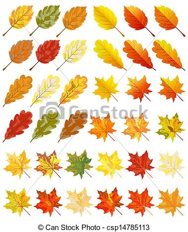 fall tree coloring pages - collection of color autumn leaves