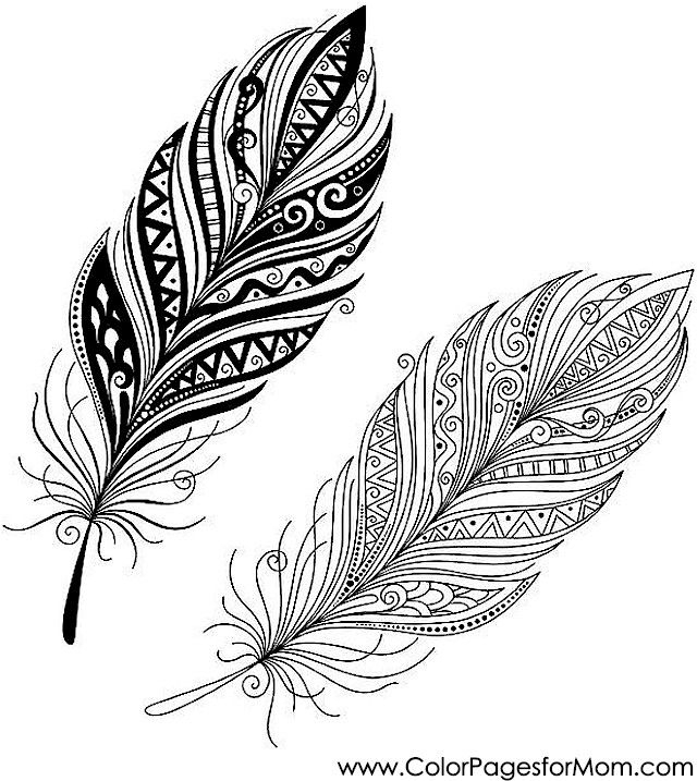 20 Feather Coloring Pages Selection | FREE COLORING PAGES - Part 2
