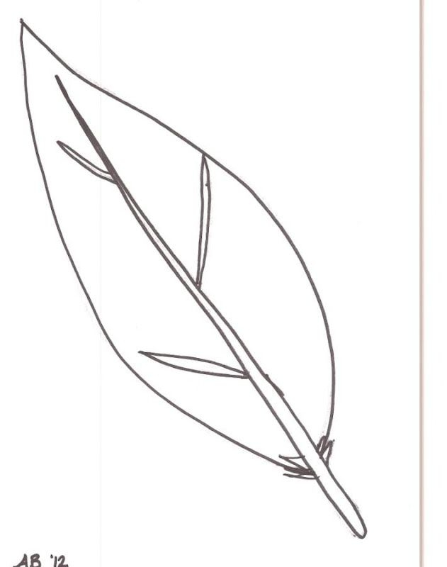 feather coloring pages - feathers coloring page