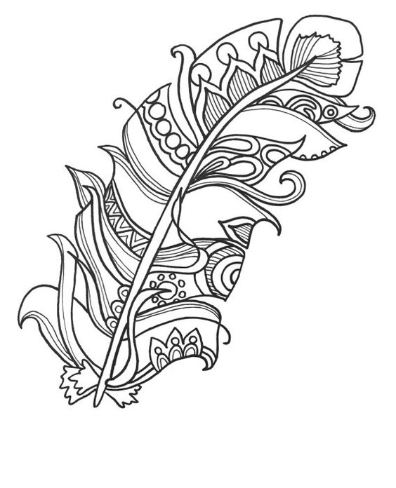 feather coloring pages - media onsugar files 2010 11 44 6 1161 8ba eb4e87b turkey coloring pages