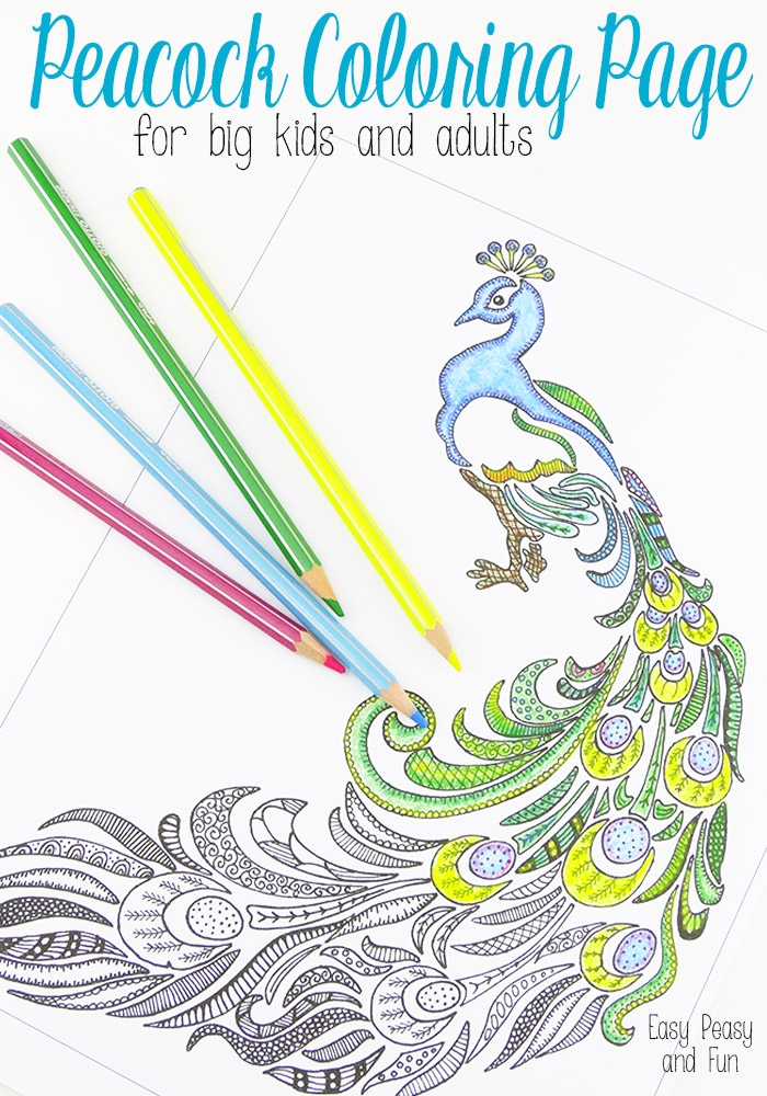 finished coloring pages for adults - peacock coloring pages