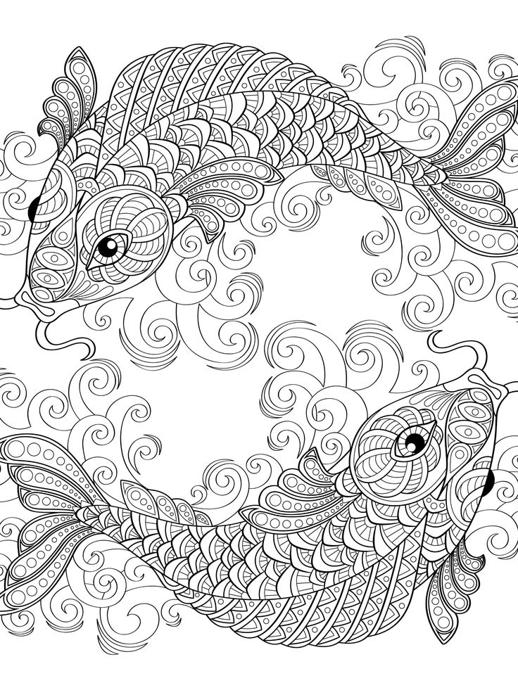 fish coloring pages for adults - coloring pages
