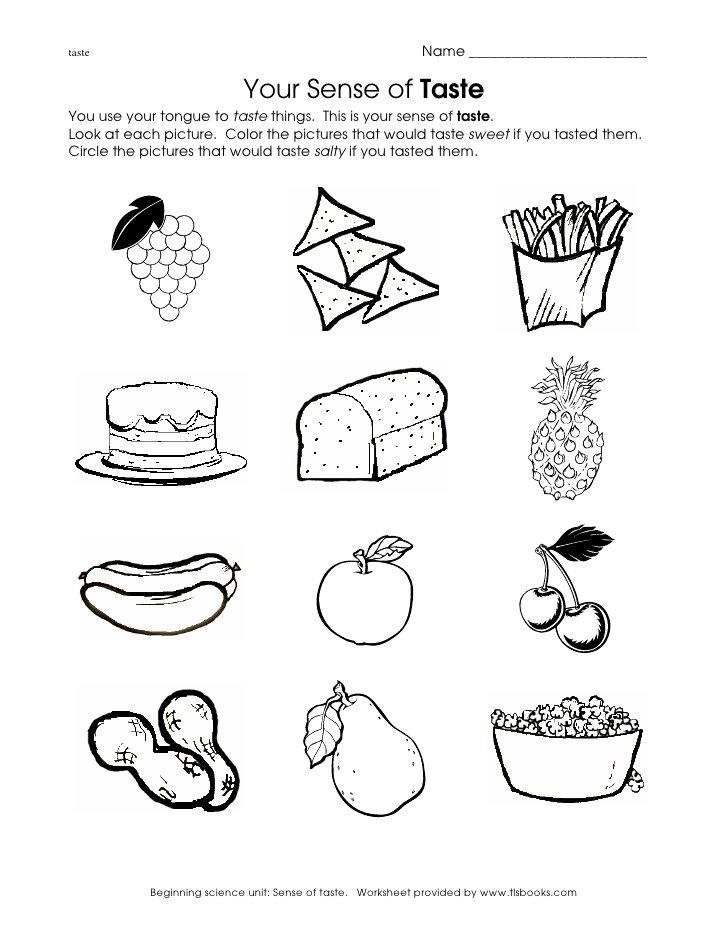 five senses coloring pages - aprender ciencias naturales en ingls