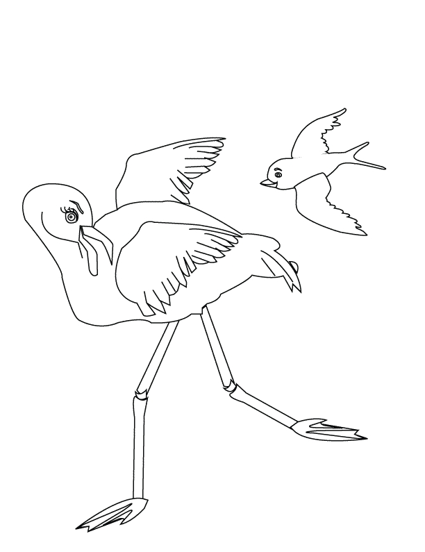 Flamingo Coloring Pages - Coloring Pages Flamingo
