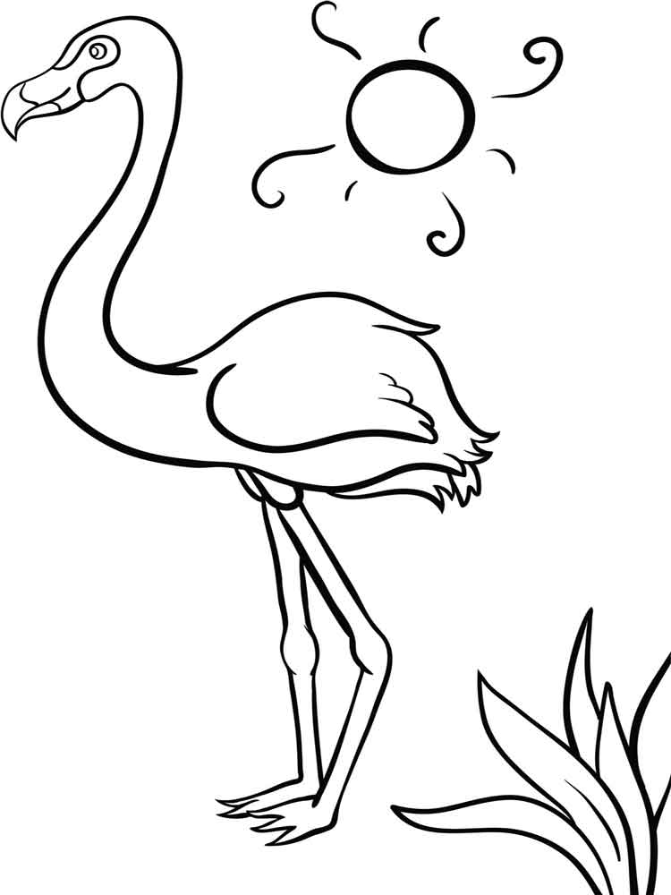 21 Flamingo Coloring Pages Pictures Free Coloring Pages