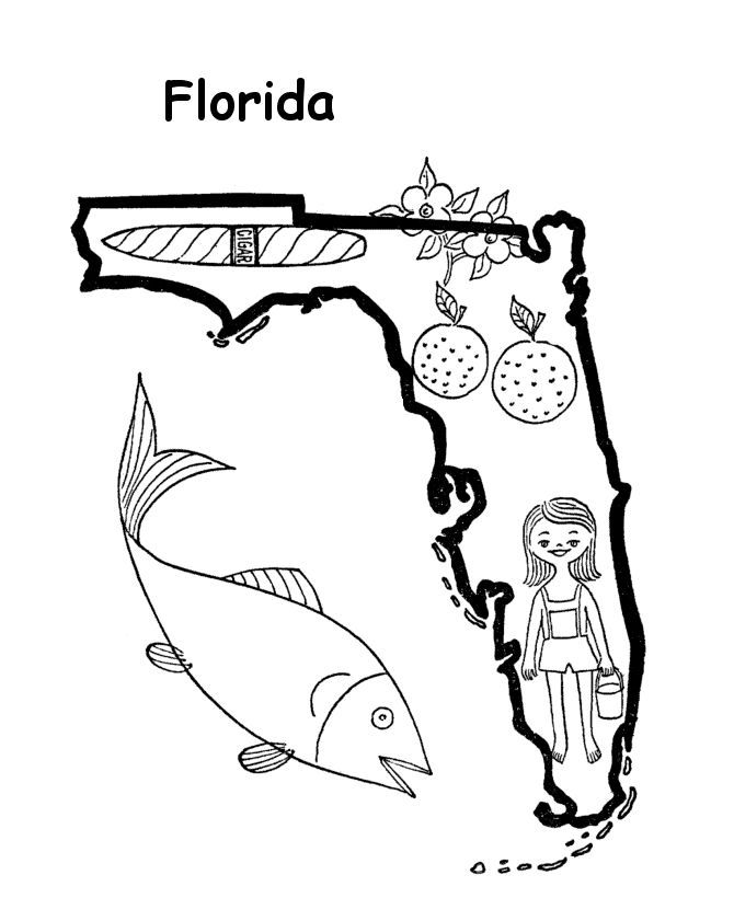 Florida Coloring Page - Florida State Tree Coloring Page Coloring Pages