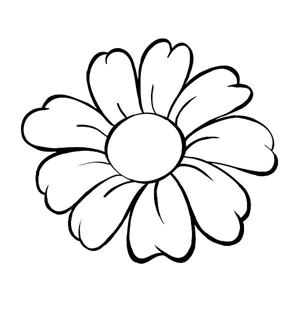 Flower Coloring Pages - Best 25 Flower Coloring Pages Ideas On Pinterest