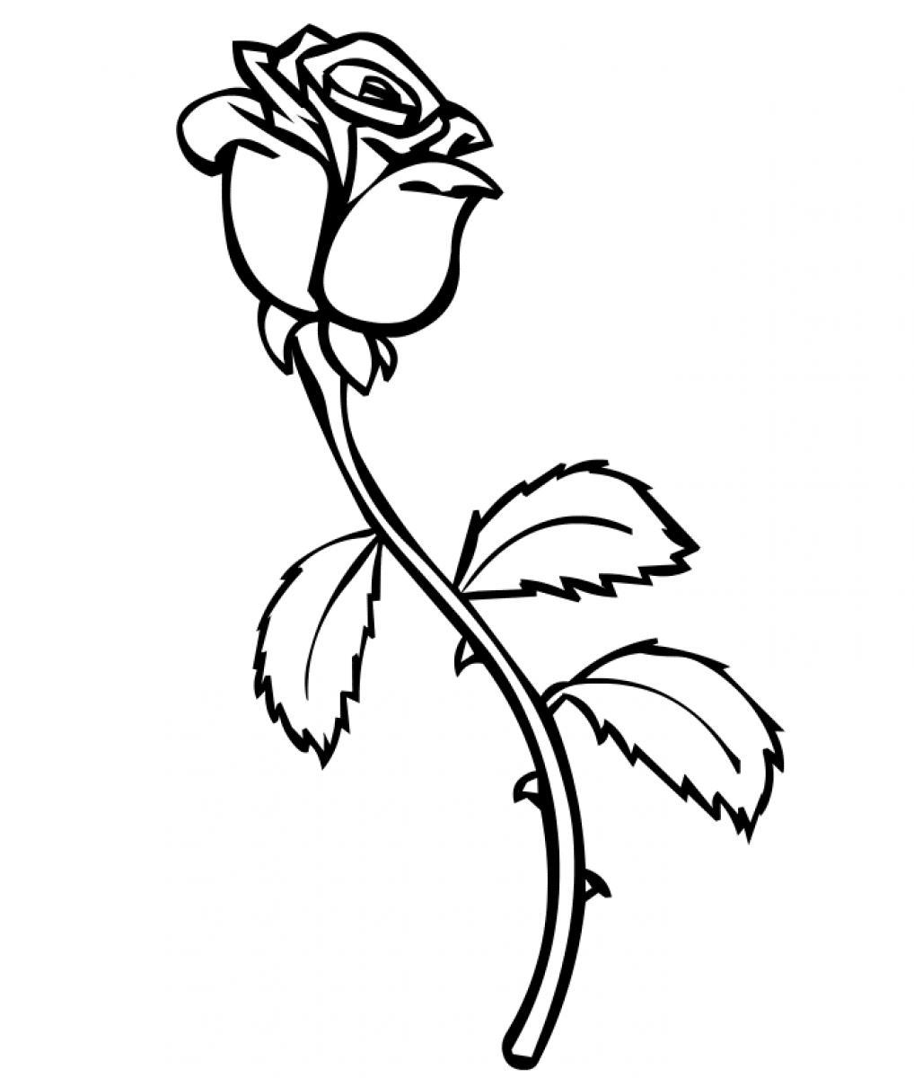 Flower Coloring Pages for Adults - Malvorlagen Fur Kinder Ausmalbilder Rose Kostenlos