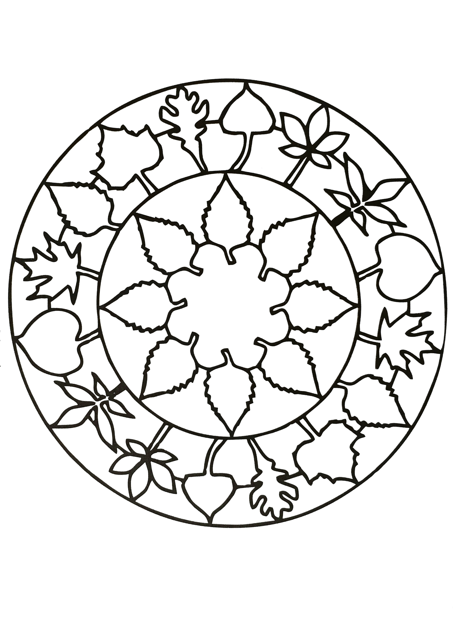 flower coloring pages for adults - image=flowers ve ation mandala flower 3