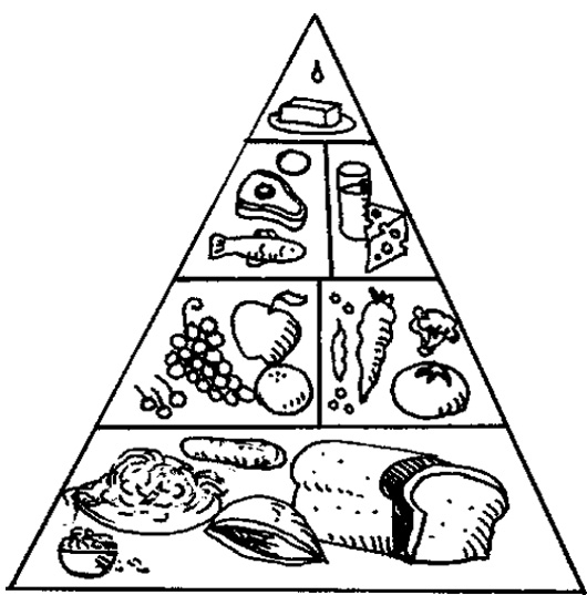 food pyramid coloring page -