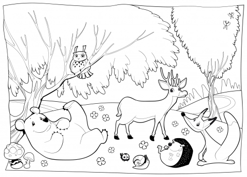 forest animals coloring pages - cartoon forest animal coloring pages sketch templates