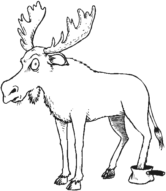 forest animals coloring pages - forest animals coloring pages