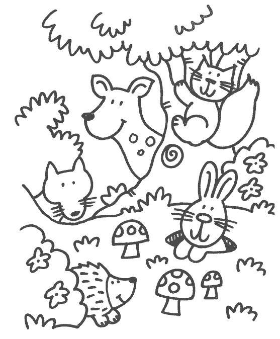 forest animals coloring pages - index dir=pages&page=coloring pages&theme=Animals&sub en=Forest Animals&categorie=Coloring Pages