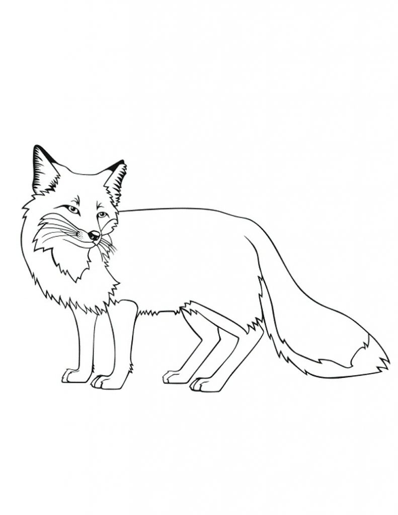 Fox Coloring Pages - Free Printable Fox Coloring Pages for Kids