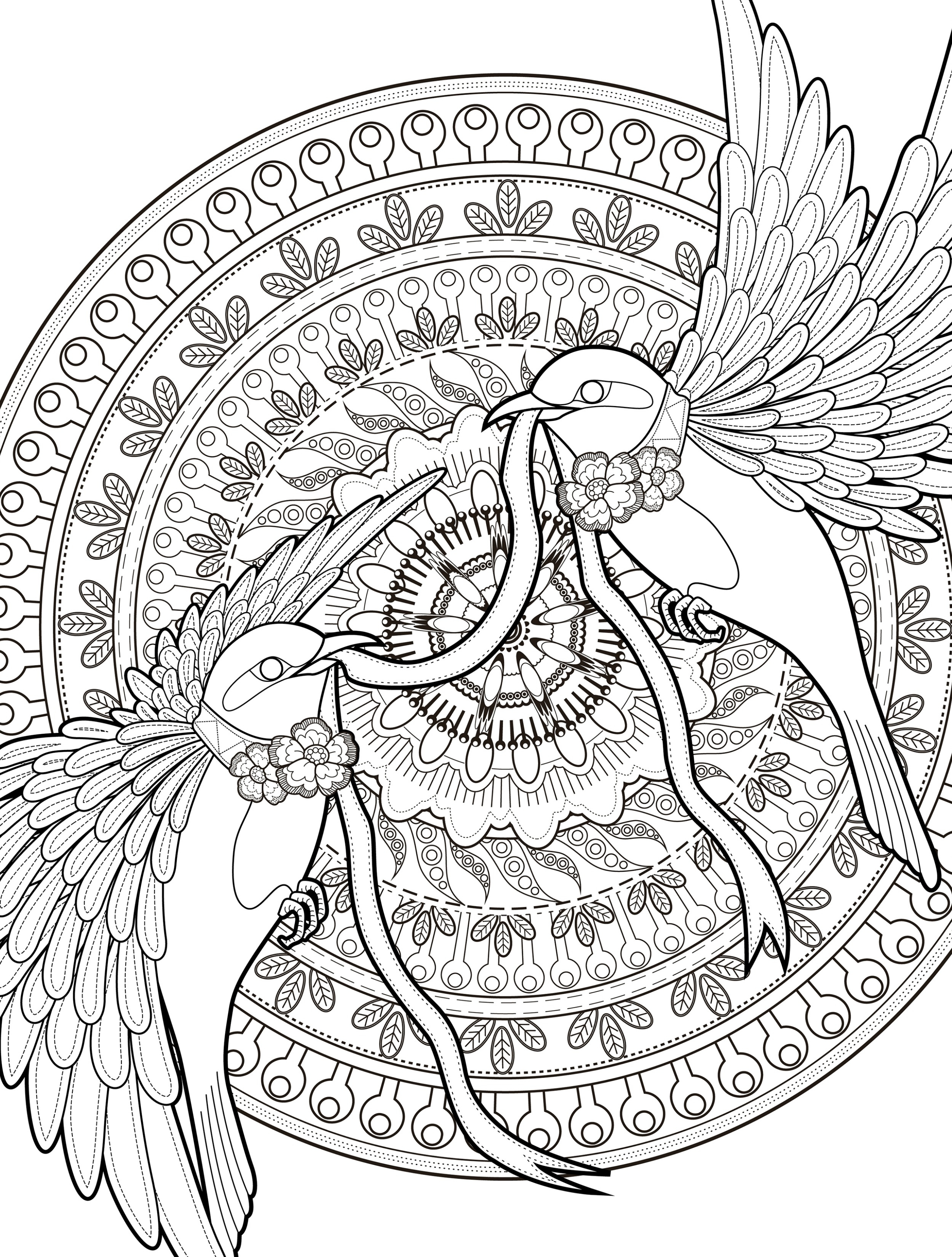 free adult coloring pages - 24