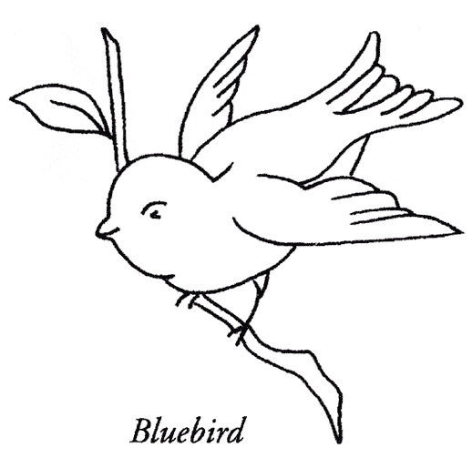 free bird coloring pages - bluebird coloring 05