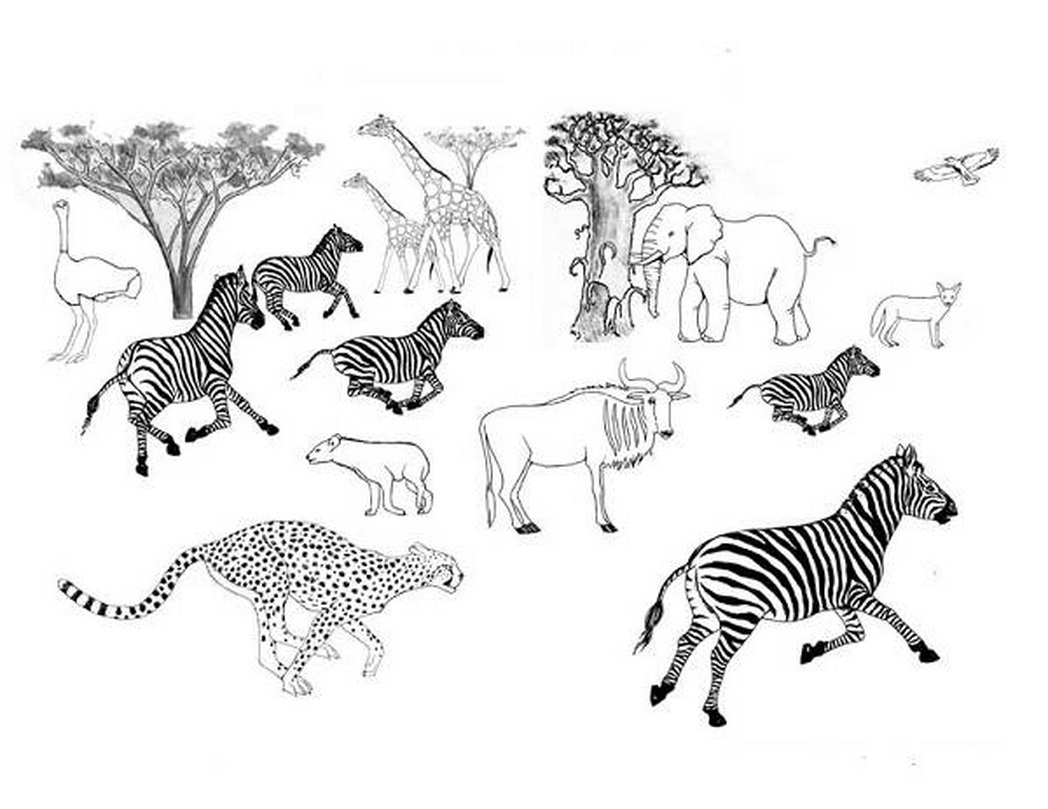 Free Fall Coloring Pages - Coloring Pages African Savanna Trend Coloring