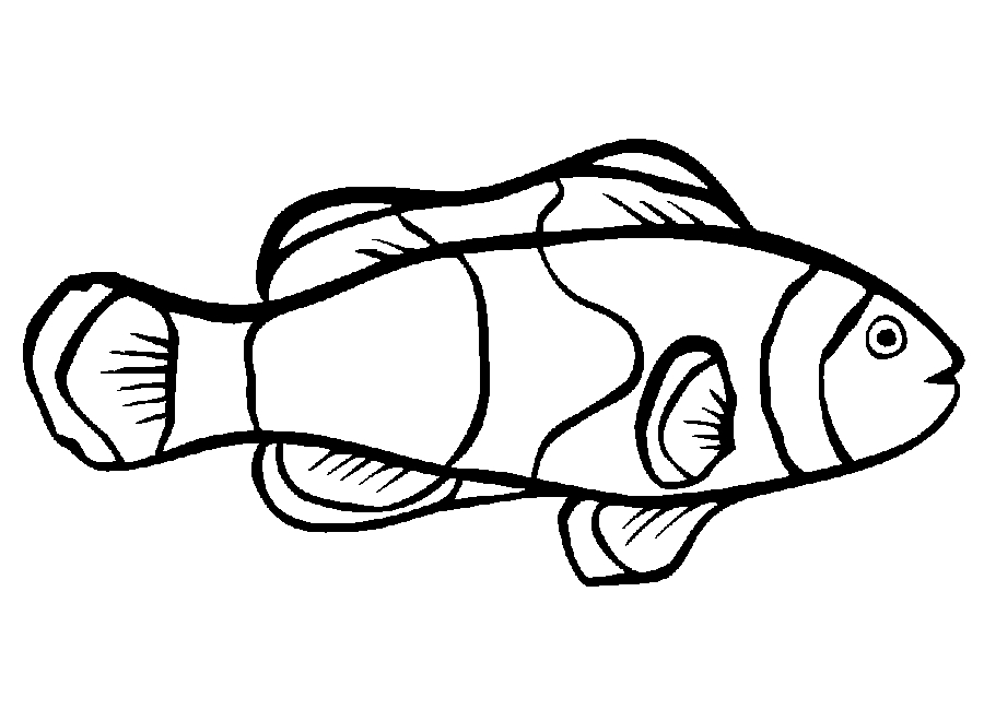 free fish coloring pages - fishes cartoon