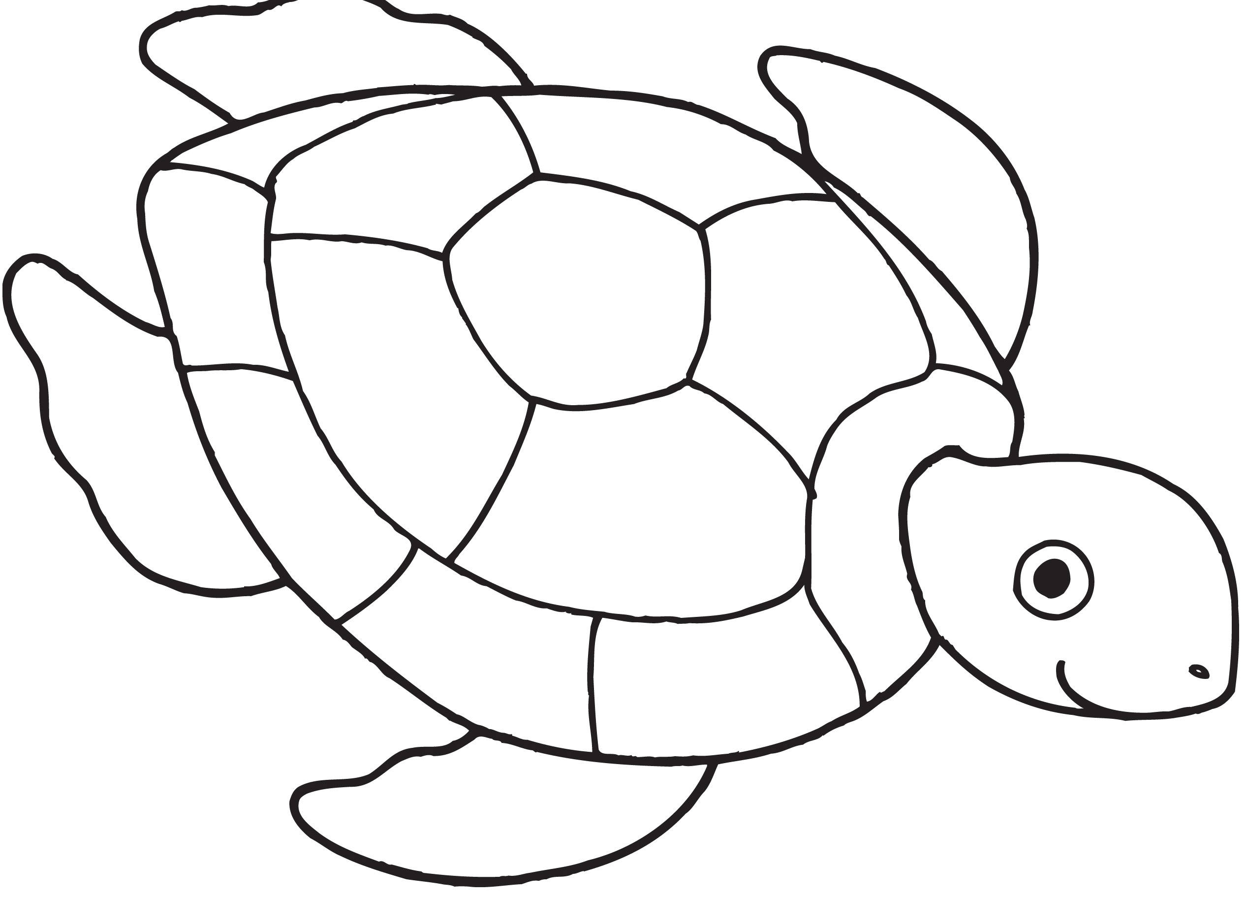 free printable butterfly coloring pages - turtle coloring pages