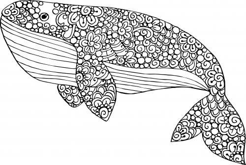 free printable coloring pages for adults advanced - blue whale coloring page
