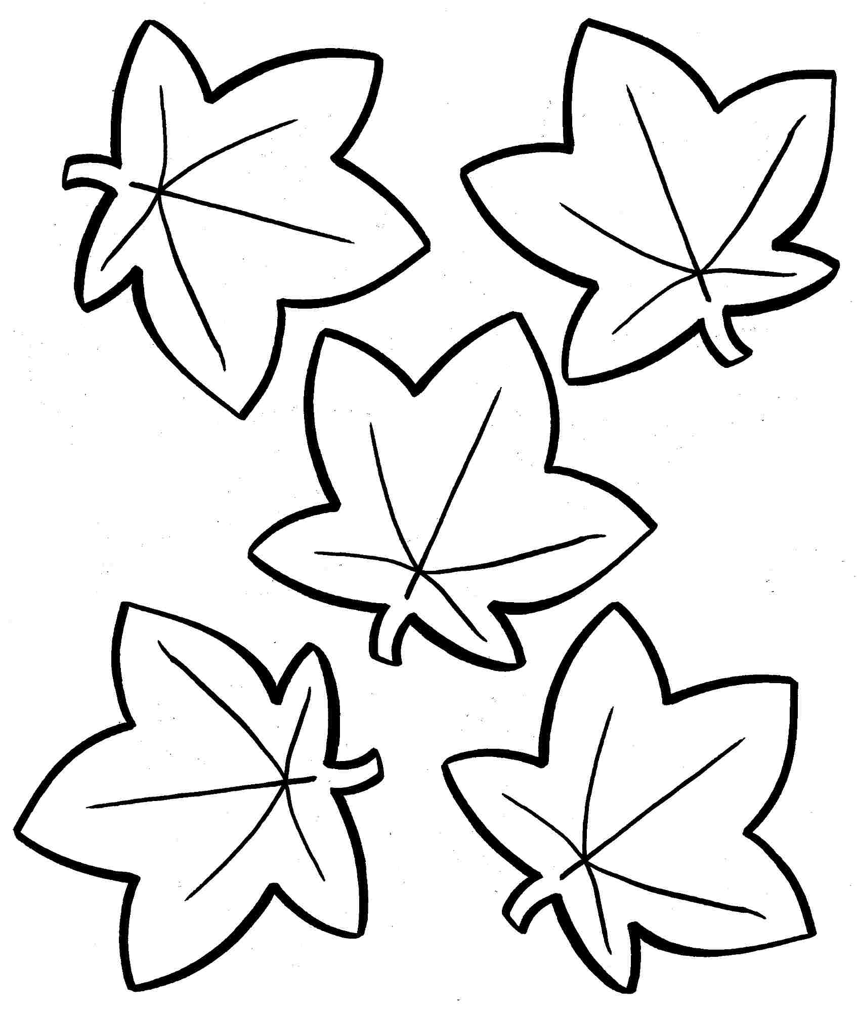 free printable fall coloring pages - fall tree coloring paper sketch templates