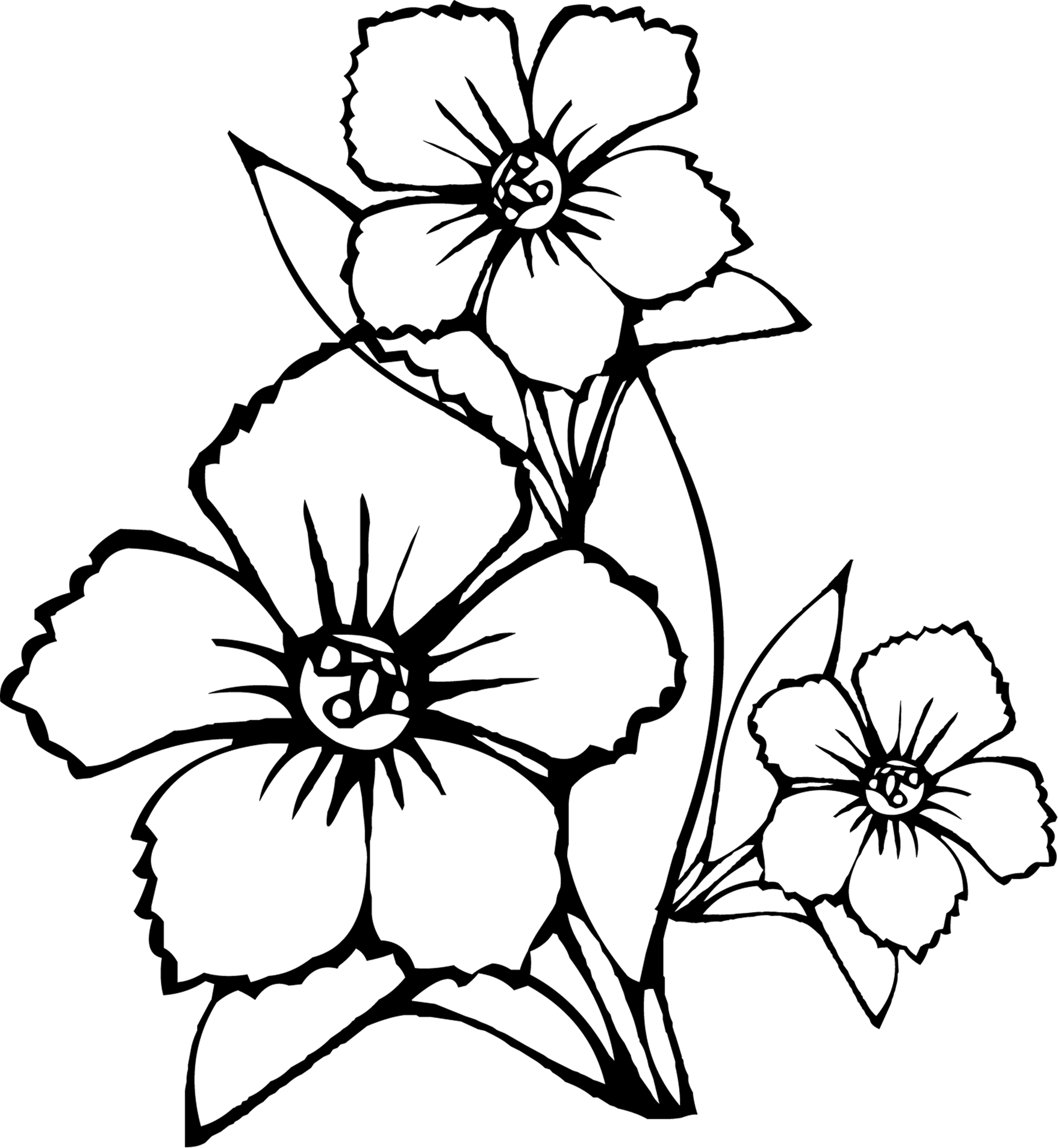 free printable flower coloring pages - free printable flower coloring pages kids
