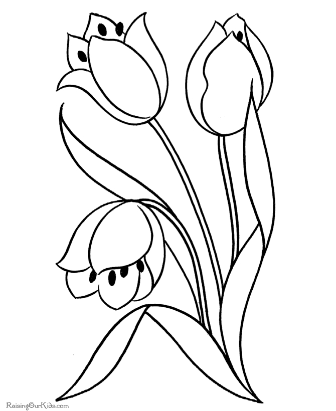 free printable flower coloring pages - 031 printable flowers