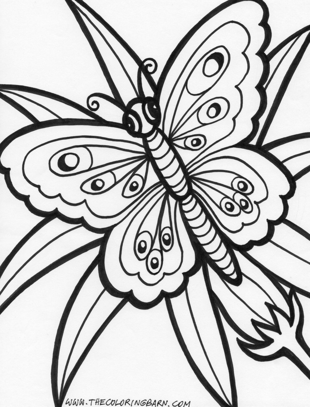 free printable flower coloring pages - summer flowers printable coloring pages 324