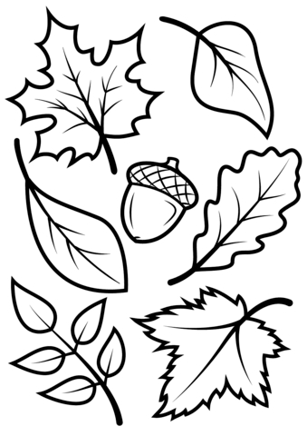 free printable leaf coloring pages - fall leaves and acorn
