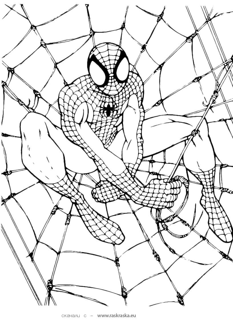 free printable spiderman coloring pages - spiderman coloring pages