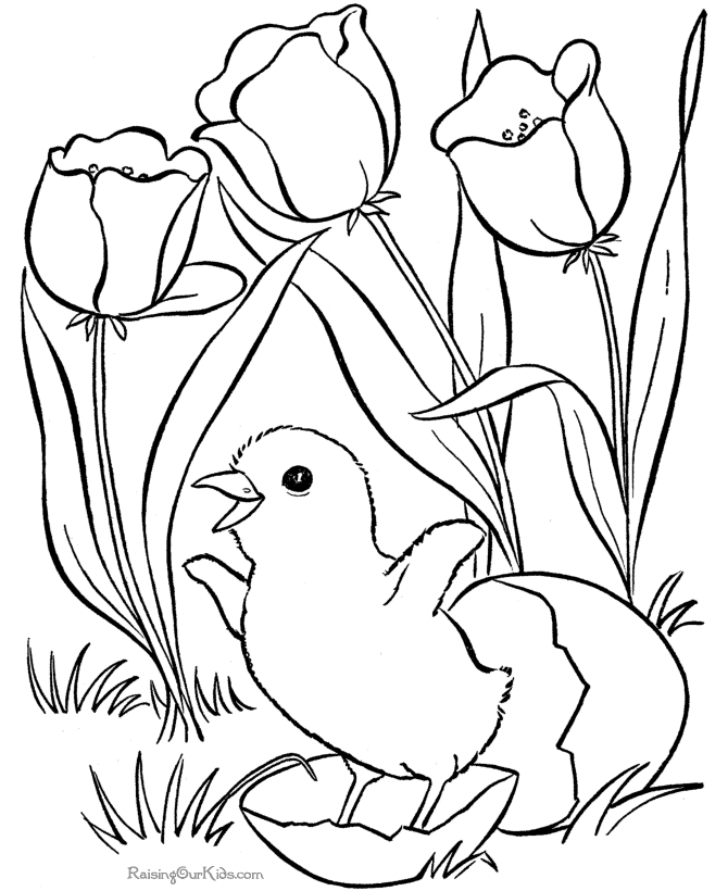 graphic about Printable Spring Color Pages named 20 No cost Printable Spring Coloring Internet pages Collections Free of charge