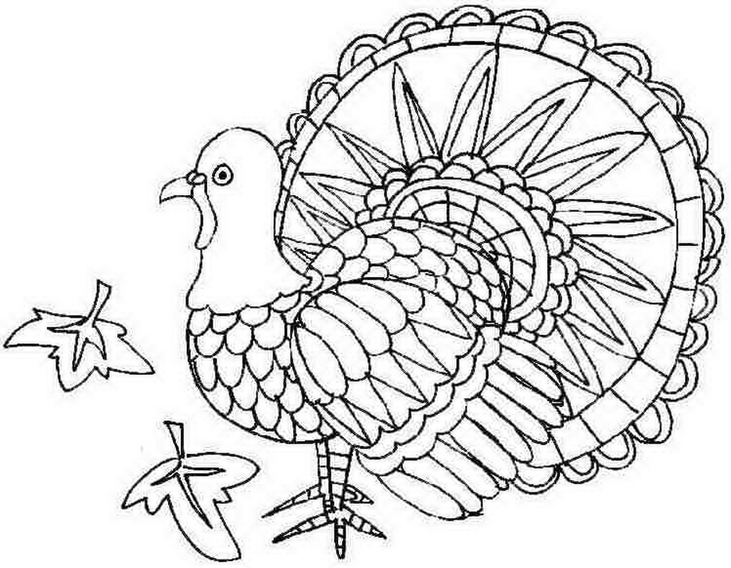 24 free printable turkey coloring pages images - Printable Turkey Coloring Pages Free 2