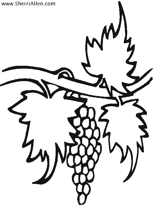 fruit coloring pages - fruit