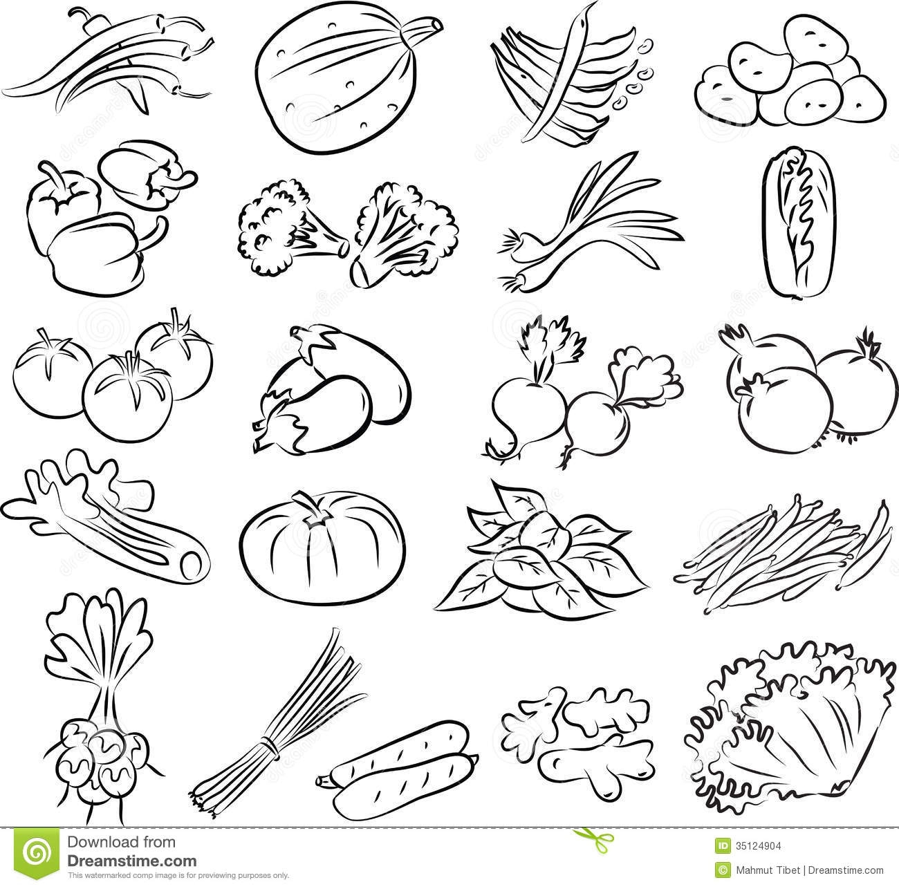 Parsley Vegetable Coloring Pages