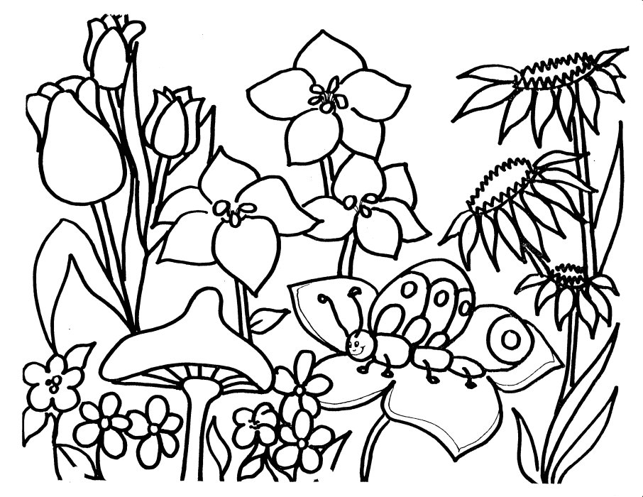 garden coloring pages - flower garden coloring pages for kids