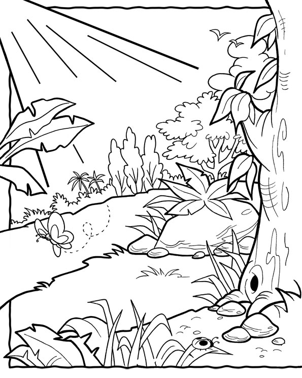 garden coloring pages - realistic coloring pages ve able garden sketch templates