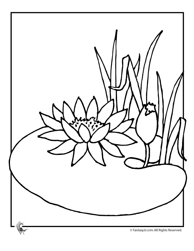 giant coloring pages for adults - cartoon lily flower