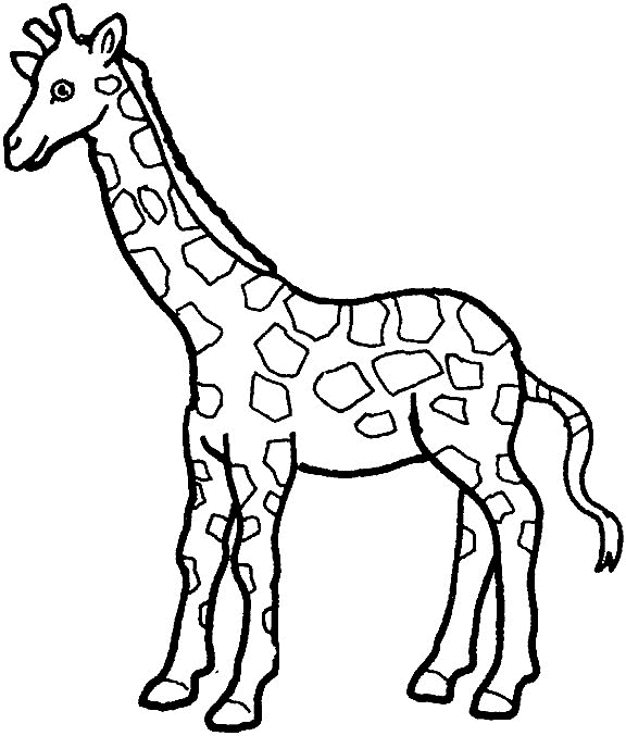 Giraffe Coloring Pages - Giraffe Coloring Coloring Pages