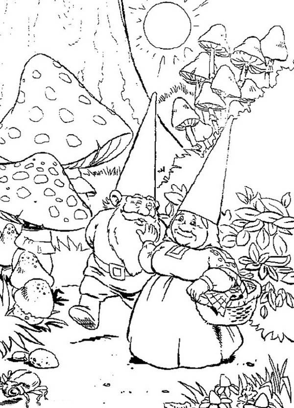 gnome coloring pages - david the gnome and lisa daily activity coloring pages 2