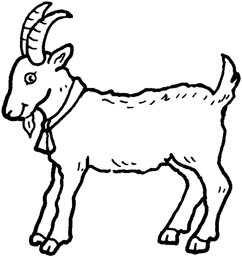 Goat Coloring Pages - 19 Animal Goats Printable Coloring Sheet