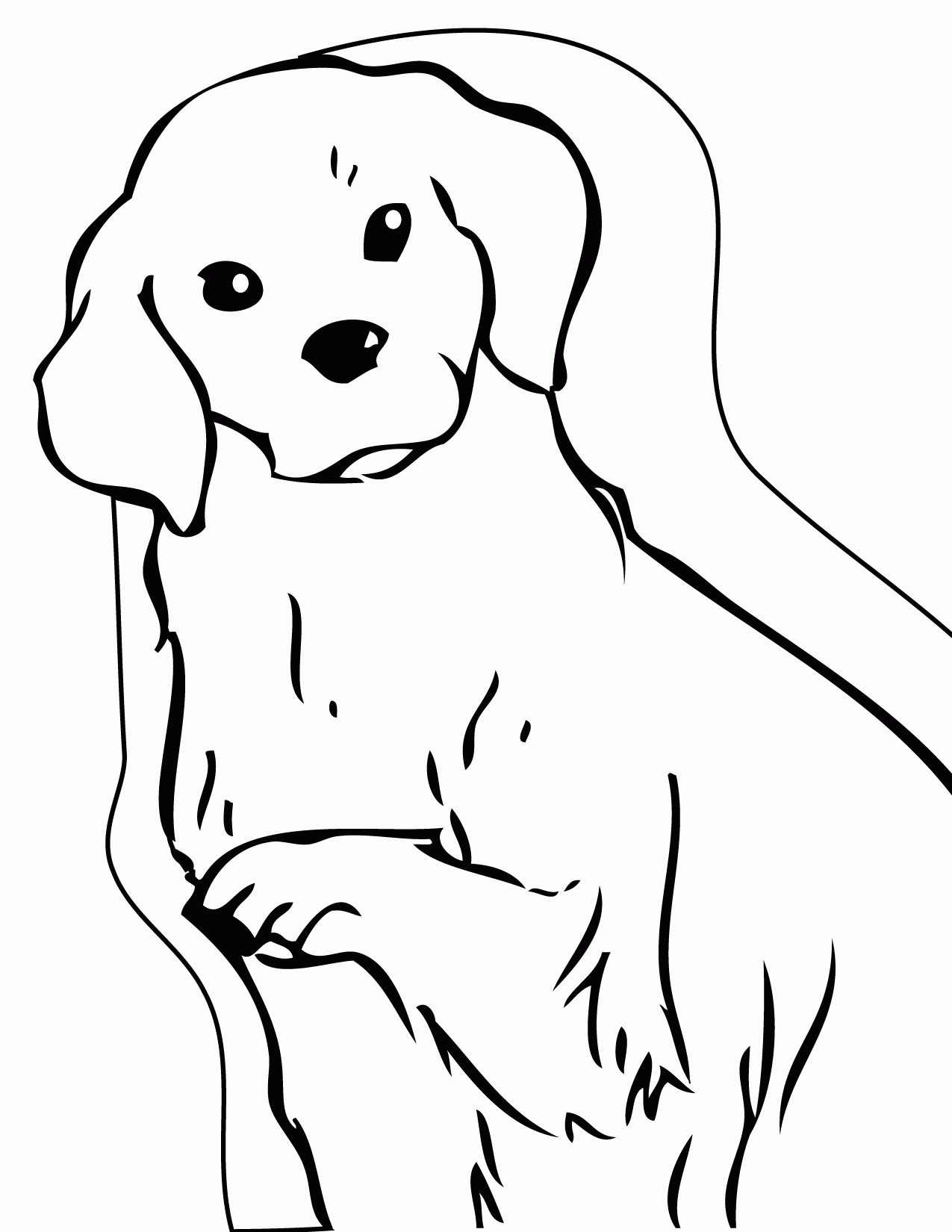 golden retriever coloring page - golden retriever puppy coloring pages printable