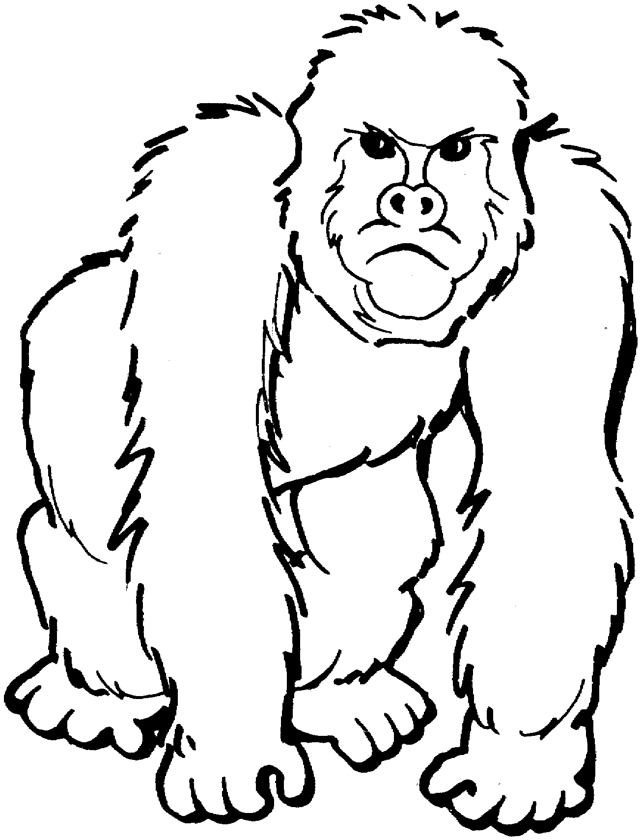 gorilla coloring pages - gorilla coloring pages