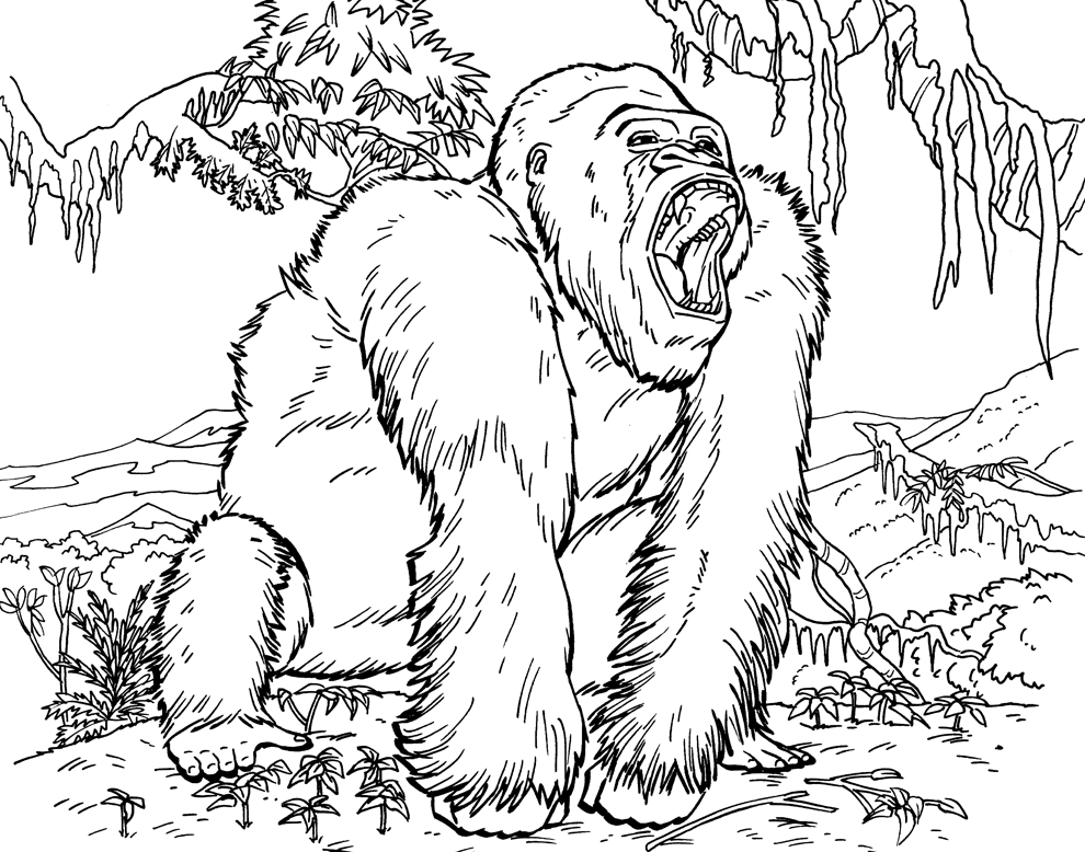 gorilla coloring pages - gorilla coloring pages to kids