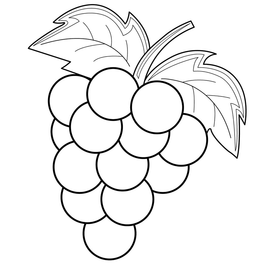 grapes coloring page - grapes coloring pages
