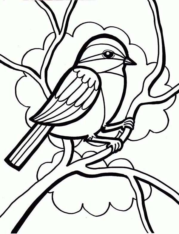 grass coloring page - drawing a little cute bird coloring page