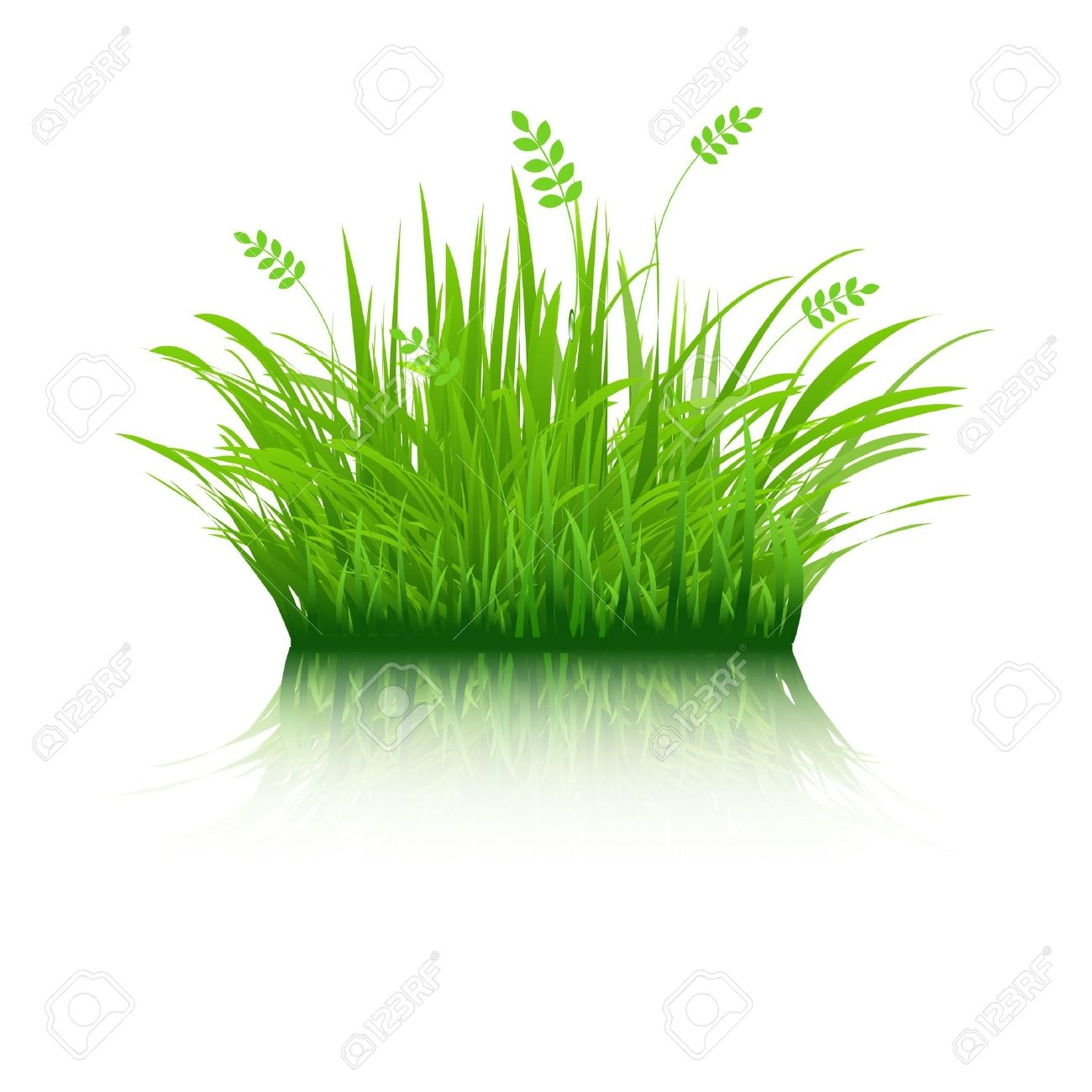 Fantastic Green Grass Coloring Pages Model - Framing Coloring Pages ...