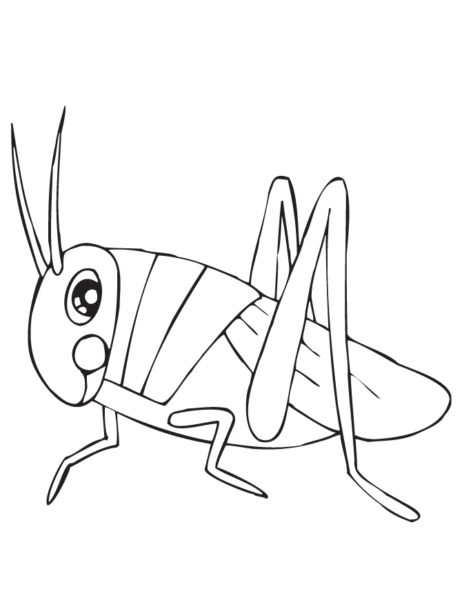 Grasshopper Coloring Page - Cute Grasshopper Coloring Page