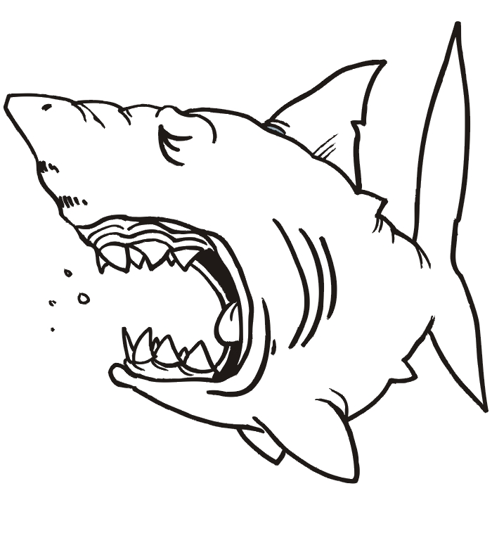 great white shark coloring pages - Shark 06