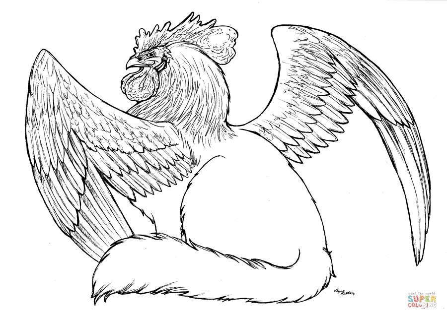 griffin coloring pages - griffin sketch templates