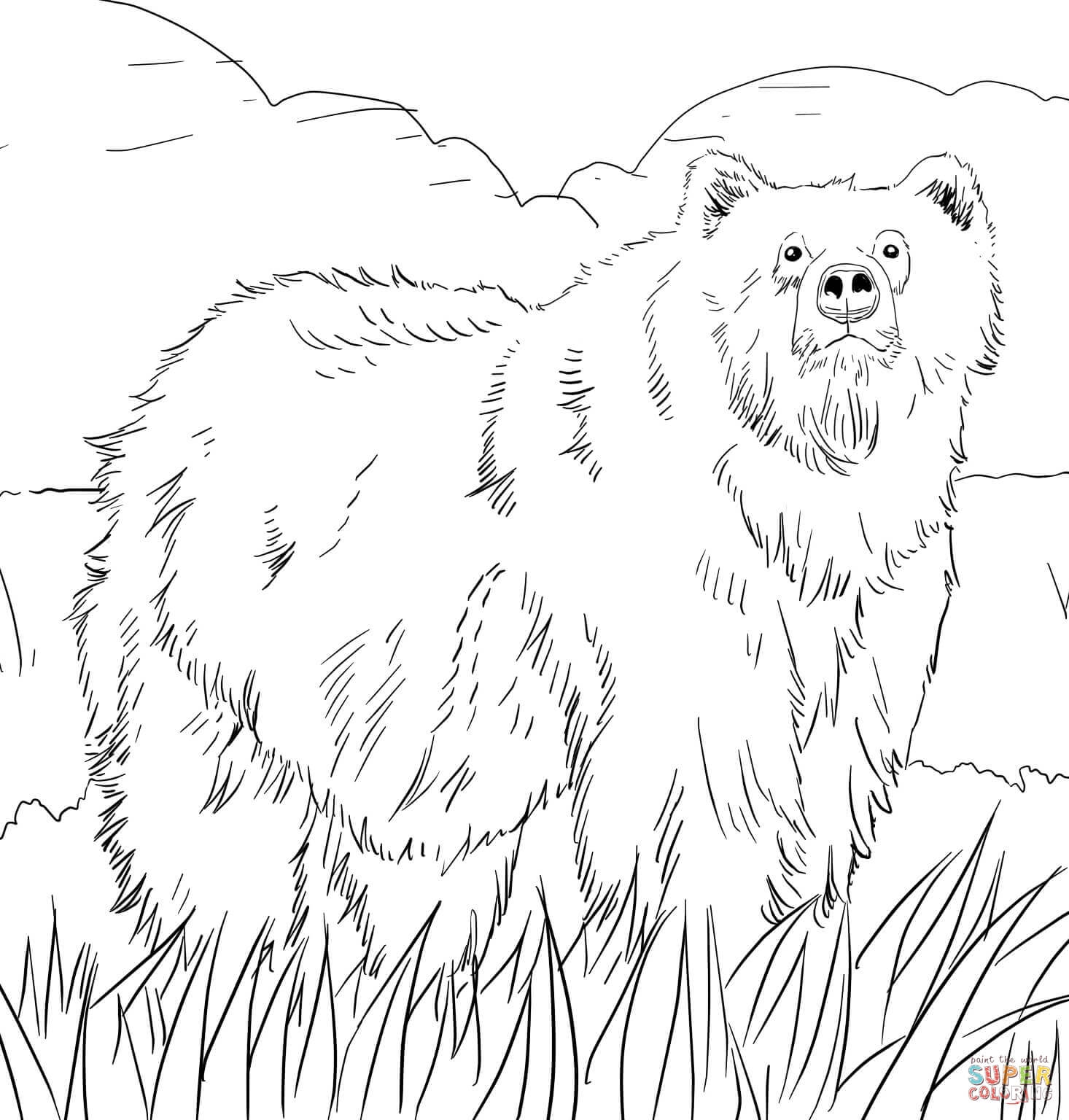 grizzly bear coloring page - alaskan grizzly bear
